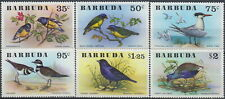 Barbuda Birds 1976 MNH-26,50 Euro