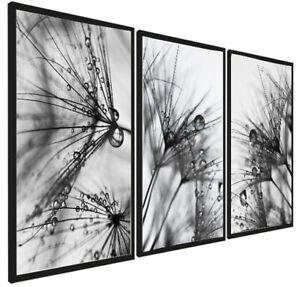 Set of 3 Dandelions Prints Modern Posters Black White Wall Bedroom Living Room