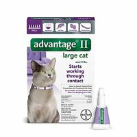 Bayer Flea Drops Advantage II for Large Cats Over 9 lbs 6 Pack FREE SHIPPING NEW