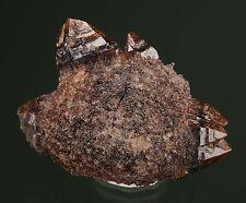"Quartz ""Onegite"" w/ Goethite 2nd Mesabi Claim Crystal Peak area Colorado 409015"