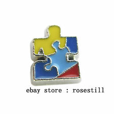 10PCS Autism Awarenes Floating charms Fit DIY living Glass memory Locket FC154