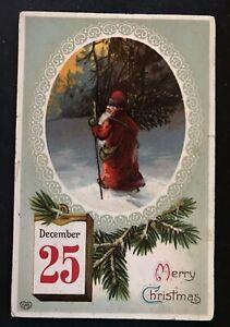 Santa Claus Walking Thru The Snow~ Pine Branches~EAS Christmas Postcard-h548