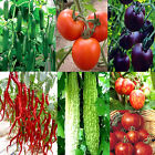 Heirloom Garden Fruits Vegetable Seed Non-GMO Seeds Survival Organic Plant Seeds