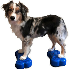 FitPAWS K9 FitBone Mini Blue Set of 2