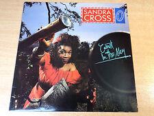 EX/EX !! Sandra Cross/Comet In The Sky/1988 Ariwa LP
