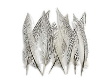 "10 Pieces 8-10"" Black & White Silver Pheasant Tail Feathers Barred Smudging Wing"