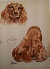 Cocker Spaniel Portrait by Diana Thorne, Original Vintage Plate 1944-Animal