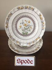 "Spode BUTTERCUP Salad Plate 7 ¾"" New Stamp ~ Pair  ~ Excellent"