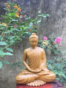 The Wooden Sitting Buddha statue - Kandahar Style