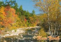 Autumn in New York - the State of USA Postcard - NEW