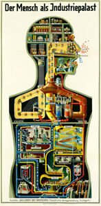 Man as Industrial Palace Anatomy Medical Diagram Giclee Canvas Print 10x20
