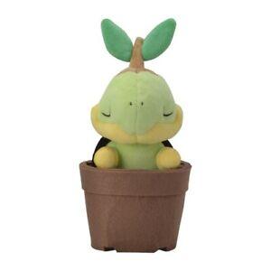 Pokemon Grassy Gardening Turtwig Plush Toy Pokemon Center Stuffed Animal