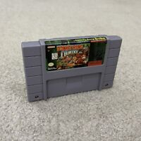 Donkey Kong Country (Super Nintendo Entertainment System, 1994) SNESTested