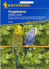 VOGELMIERE , Samen , Futter, Sämereien, Saatgut Vögel Vogelfutter Haustiere