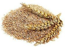 Food, Bedding, Wheat Bran for Mealworms 5 lb. - Free Shipping