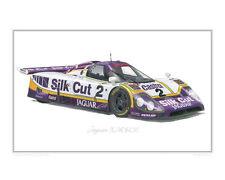 Jaguar XJR-9LM Limited Edition Classic Le Mans Race Car Print Poster Steve Dunn