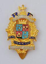 Insigne de fonction: Conseil Municipal de Champigny sur Marne