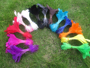 Wholesale Beautiful feathers 200 pcs 6-8 inches / 15-20 cm various colors