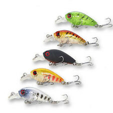 5x 35mm Crank baits Fishing lures Shallow Hardbody Crankbait BREAM BASS Shrimp