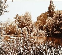 Etang Paesaggio Francia Foto Stereo PL58L5n6 Placca Da Lente c1920