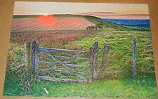 2013 Mega Puzzles 500 pc jigsaw puzzle titled SUMMER SUNSET