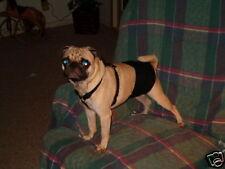 """1 ULTIMATE Dog Belly Band Diaper Wrap Med 19-23 x 6""""  Black Denim Reusable"""