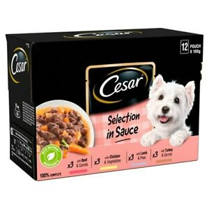 Cesar Adult Dog Food Pouches | Dogs