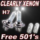 CLEAR XENON headlight bulbs mgf 95/02 dipped h7 501