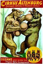 Original vintage poster CIRCUS ALTENBURG BOXING BEARS c.1945