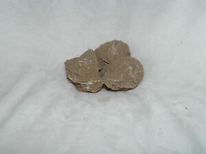ANCIENNE ROSE DES SABLES  (467)