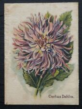 CACTUS DAHLIA 1911 Wills Australia Silk Flower POPULAR FLOWERS
