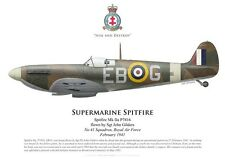 Print Spitfire Mk IIa, Sgt John Gilders, No 41 Squadron RAF, 1941 (by G. Marie)