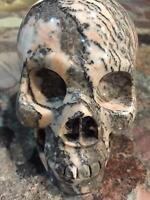 "5"" Zebra Jasper Crystal Carved Skeleton, Crystal Realistic Healing Skull #SK006"