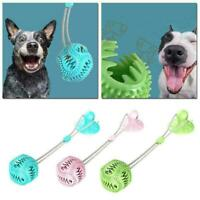 Pet Dog Puppy Bite Molar Toy Teether Exercise Floor Cup Ball V7T4 With A0R4