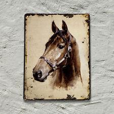 Ein wunderbares Blechschild, Pferdemotiv
