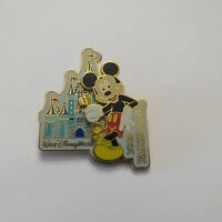 Disney WDW Passholder Exclusive 2008 Passholder Mickey Pin