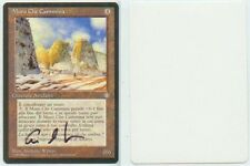 Anthony Waters Signed MTG Magic_ ARTIST PROOF_ IT Ice Age WALKING WALL _1/50!