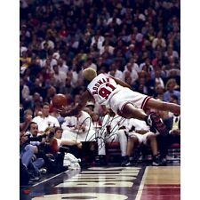 "Dennis Rodman Chicago Bulls Autographed 16"" x 20"" Vertical Diving Photograph NBA"