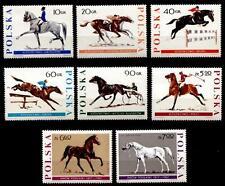 Pferde, Pferdesport. 8W. Polen 1967