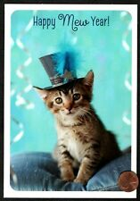 New Years Grey Tabby Kitten Cat Blue Hat Feather - New Year's Greeting Card New