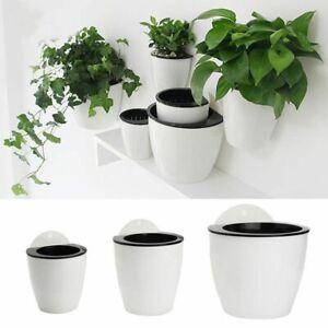 Self Watering Plant Flower Pot Wall Hanging Basket Planter Plastic Garden Supply