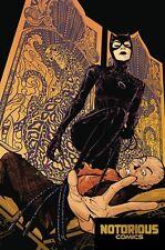 Catwoman #6 Dc Comics 1st Print Excelsior Bin