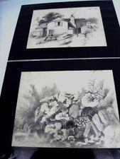 """MONTALANT. A.-Ecole Frse-19è: 2 dessins """"Plantes de rivière/ La grande ferme"""" E"""