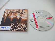 Bruce Springsteen Secret Garden Promo. Promotional. 1 track. CD SINGLE