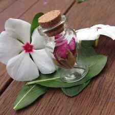 180x 4cm Craft Mini Small Tiny Clear Glass Bottles Jar Cork lid wedding favor