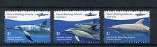 Cocos Keeling Islands 2016 MNH Dolphins 3v Set Marine Mammals Animals Stamps