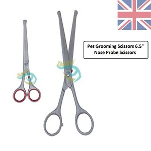 """Probe safety mustache ear nose pet grooming dog blunt end scissors 6.5"""" Straight"""
