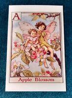CICELY MARY BARKER FLOWER FAIRIES POSTCARD, THE APPLE BLOSSOM FAIRY, ALPHABET