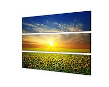 140x90 Sommer Landschaft Sonnenblumen Feld Sonne Keilrahmen Leinwand Sinus Art