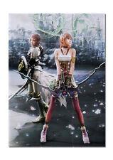 Final fantasy XIII 13 XIII-2 13-2 Lightning Serah Japanese Anime Art  poster